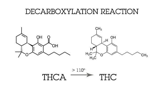 Decarboxylering CANNABIS
