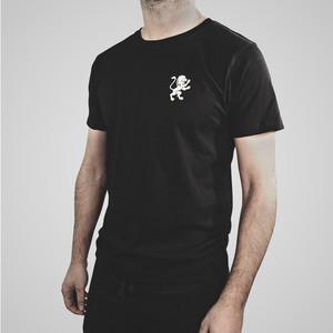 Biologisch T-shirt van RQS