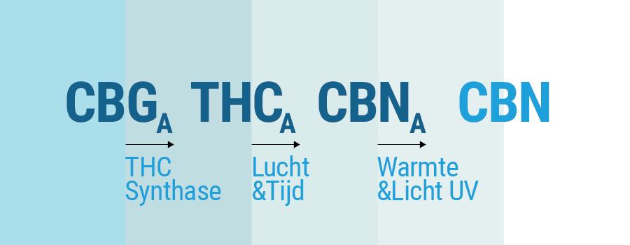 CBG CBD THC CBN