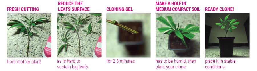 klonen tutorial