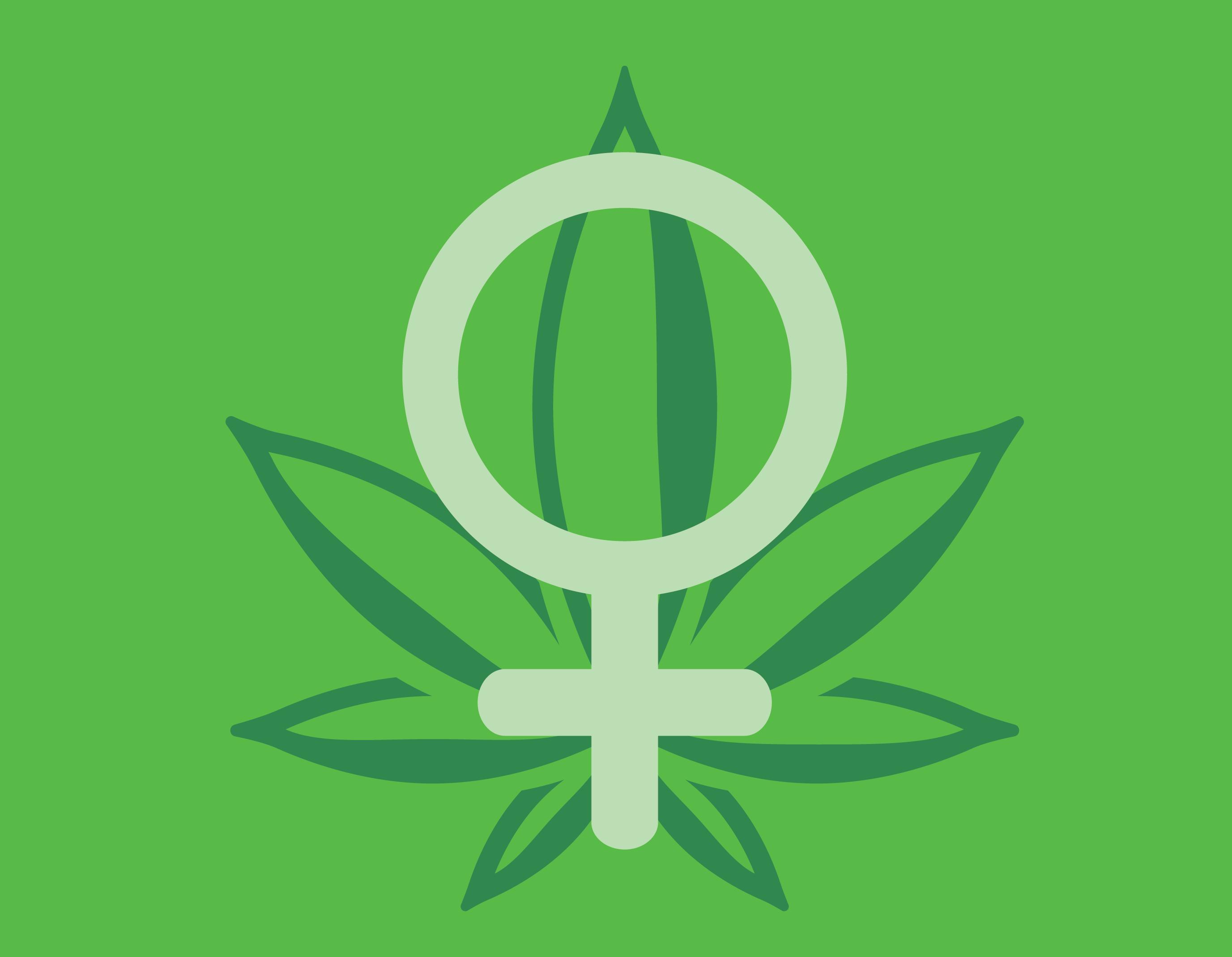 vrouw cannabis marihuana smaak van de consument voorkeuren van Royal Queen Seeds favoriet