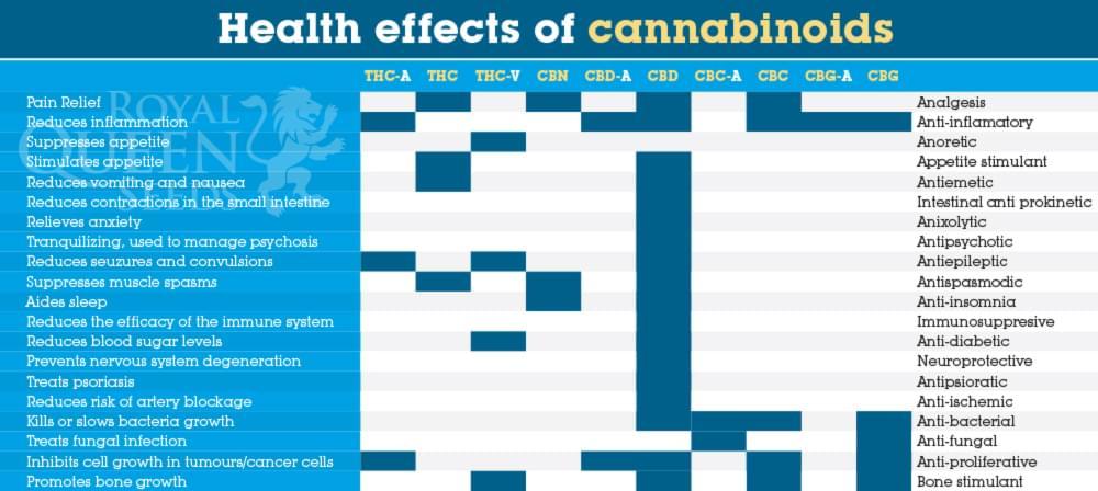 Cannabis en Fibromyalgie