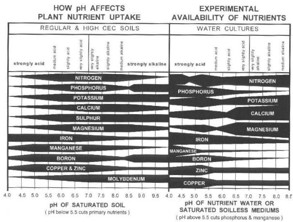 Plant PH affects Nutrient Uptake