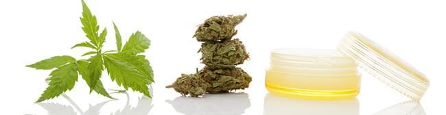 cannabis PLAATSELIJKE MIDDELEN
