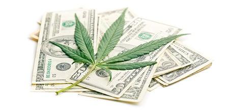 Verenigde Staten cannabis