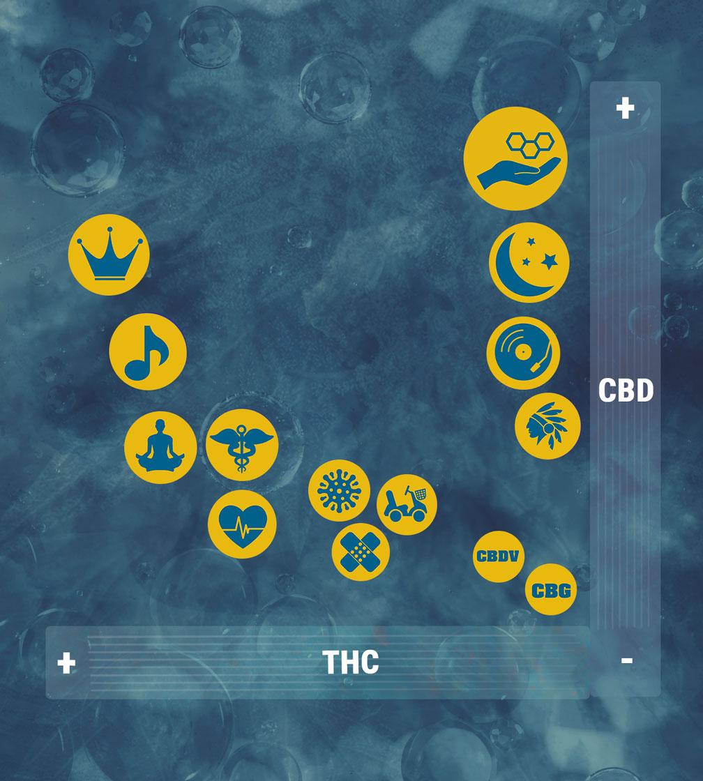 CBD THC Strains