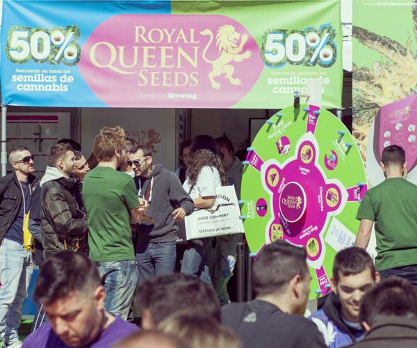 marihuanafestival winkel royal queen seeds barcelona spannabis