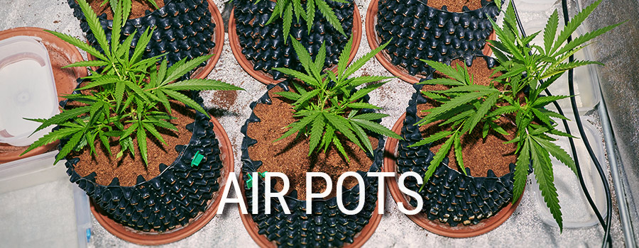 Air Pots Cannabis Teelt
