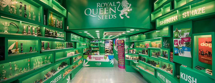 Cannabis Seed Shop Royal Queen Seeds in Barcelona