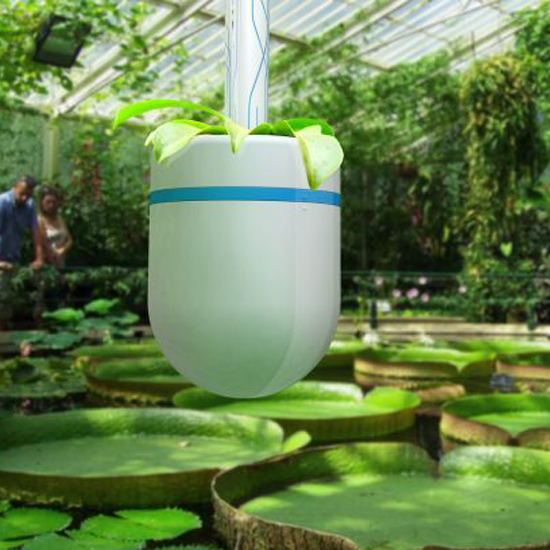 ottimizzare l'apporto d'acqua in serra