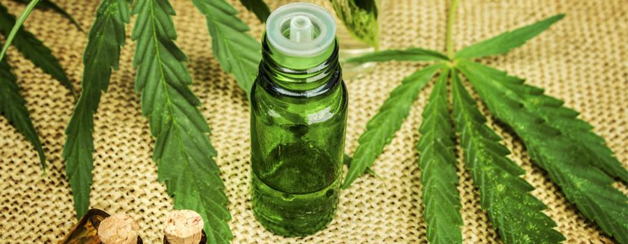 Cannabis Oil Market legalisatie samenstelling