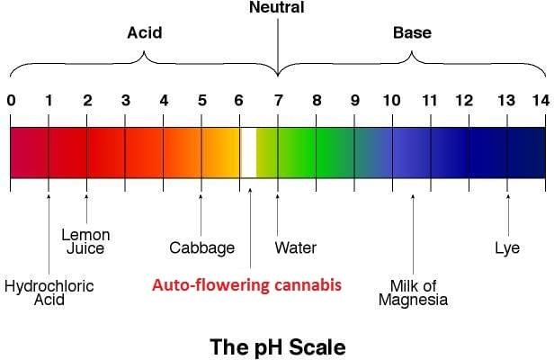 How To Measure Alkalinity In Drinking Water