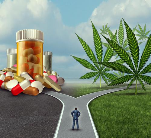 migraine cannabis pil hoofdpijn behandeling