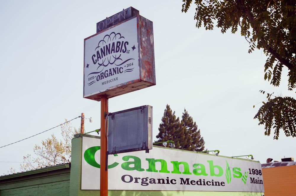 marihuanaapotheek legale medische cannabis expansie wet legalisering