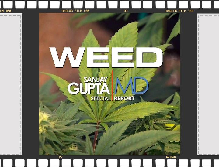 Cannabis Documentaires