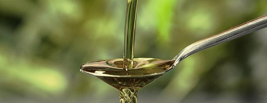 foto de Honing gebruiken bij het kweken van cannabis - RQS Blog