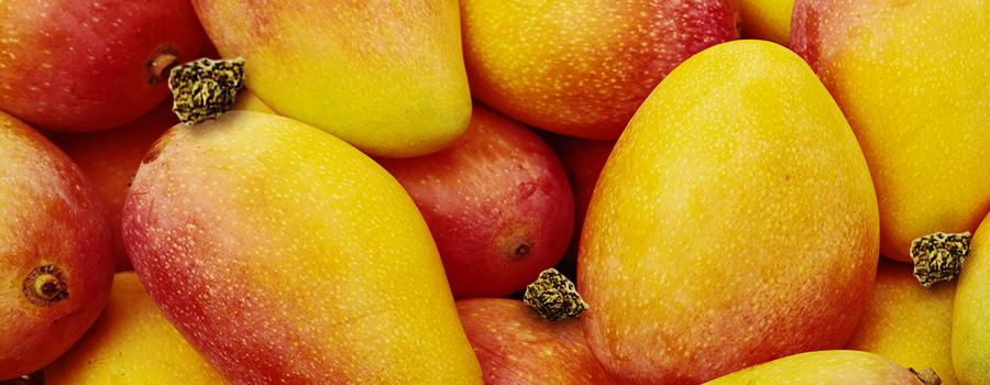 Eet mango's om vreetkicks te vermijden