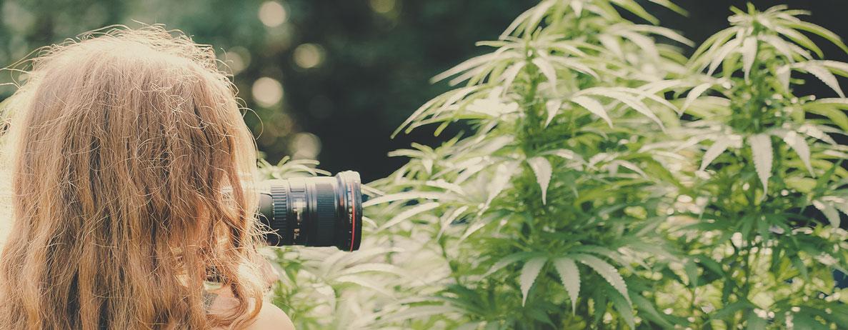 Wat voor soort banen kan een wietfotograaf krijgen (bijvoorbeeld in onroerend goed, voor coffeeshops, fotojournalisten voor wiet...)?