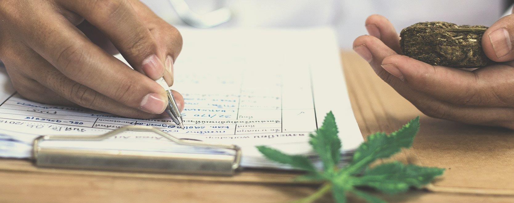 Het belang van THC-gehalte voor kwekers en gebruikers