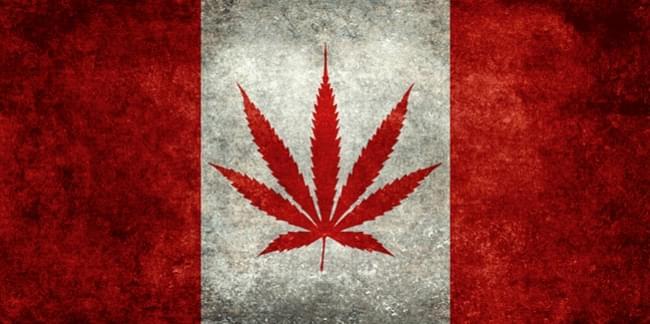 canada wetgeving recreatieve marihuana medische