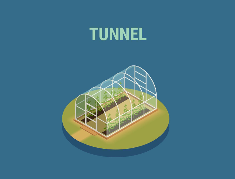 Tunnelkassen