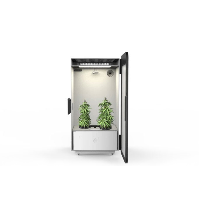 the leaf kweekkast growbox