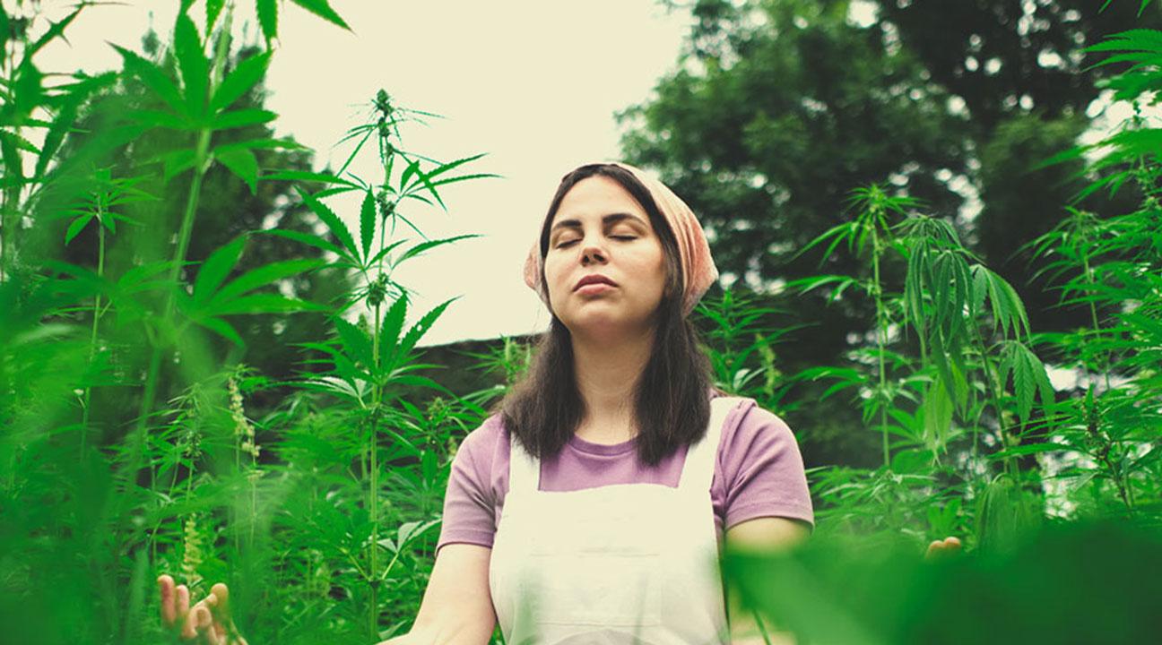 Kun je een oefening met ons delen die we kunnen gebruiken om te mediteren met wiet?