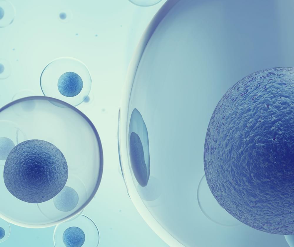 MRSA cannabis resistentie tegen antibiotica bacteriële infectie
