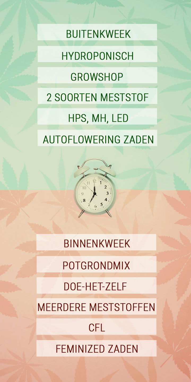Tijdbesparende tips voor drukke cannabiskwekers