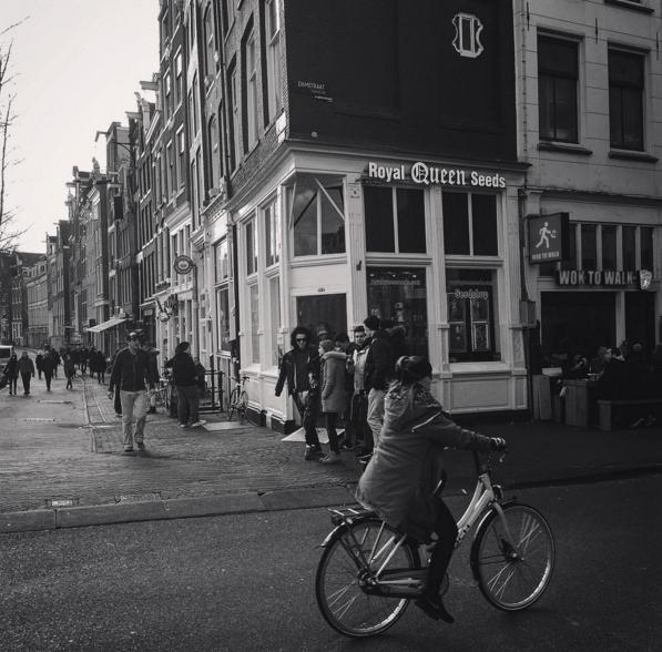 Cannabis zaden winkel in Amsterdam