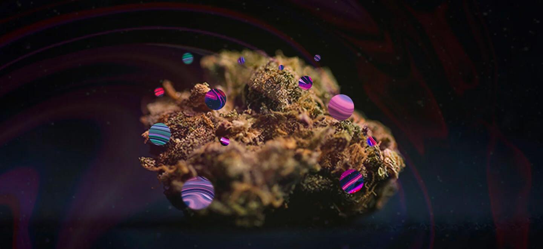 Inzicht in de chemie van cannabis