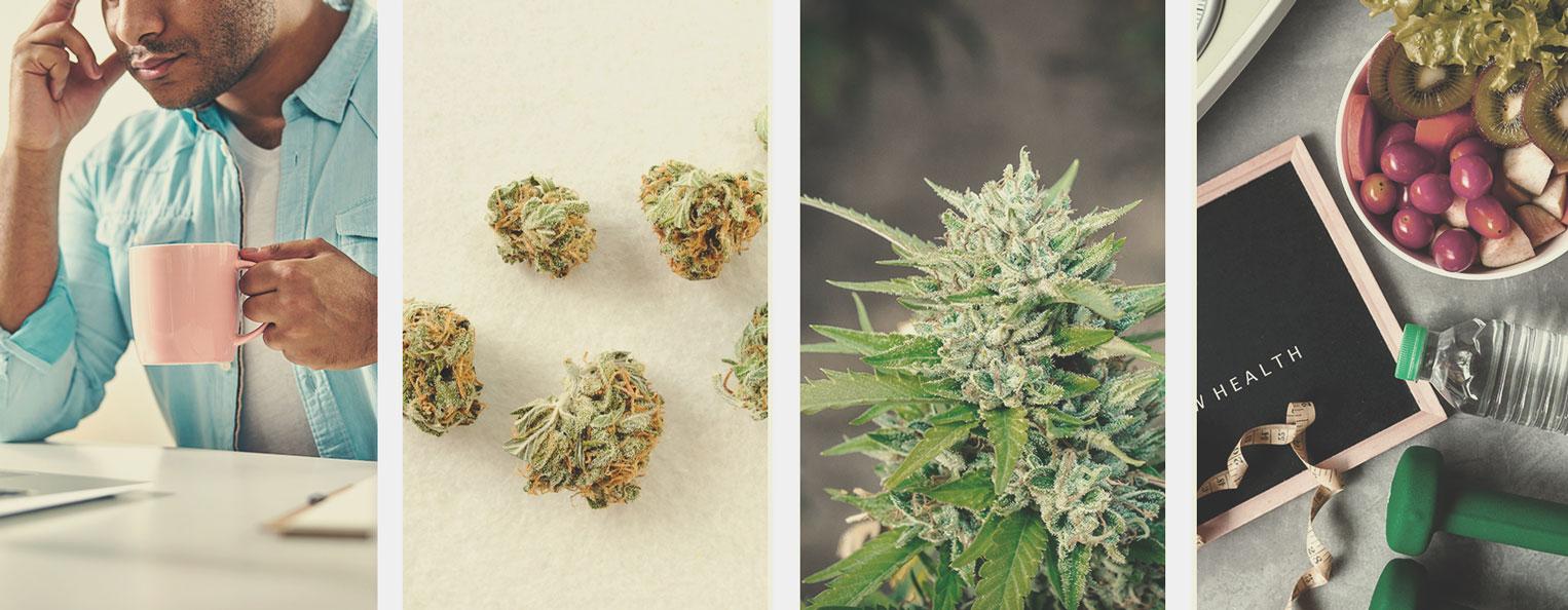 Cannabisgebruik beperken of helemaal stoppen