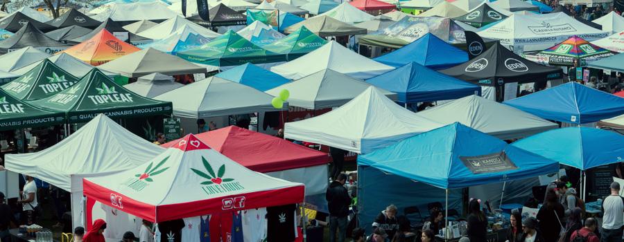 Norml legalisation van cannabis