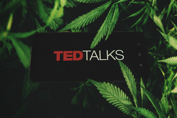 Ted Talks over cannabis — De beste over wiet