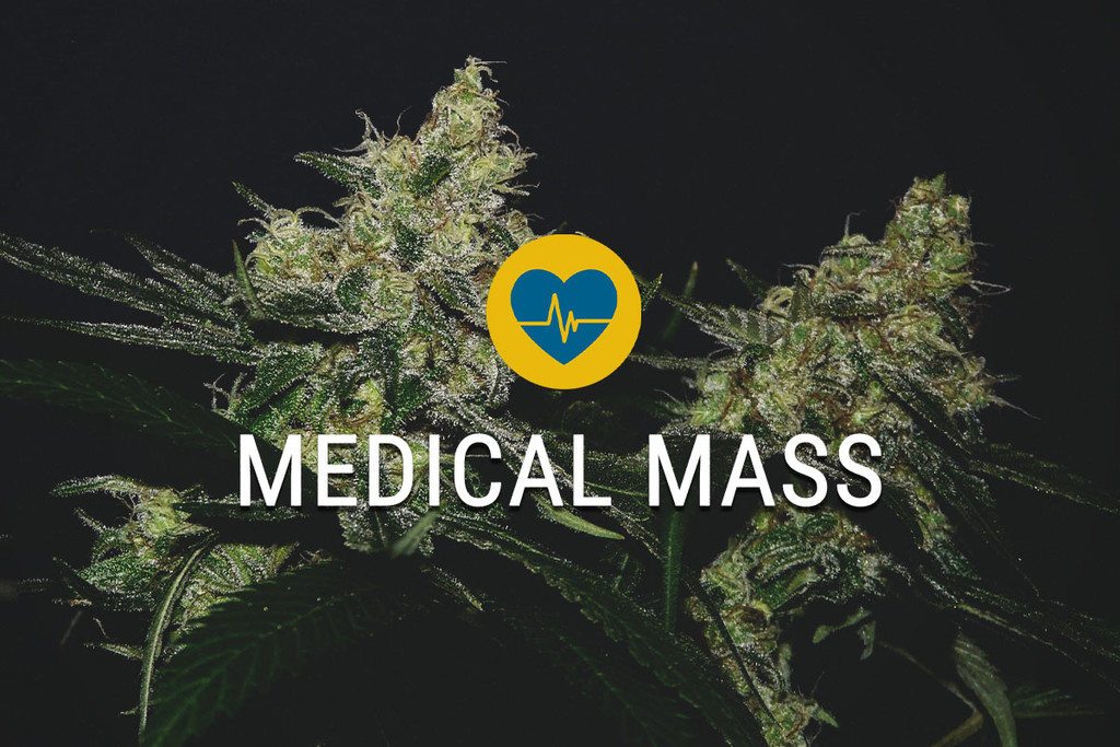 Medical Mass medicinaal cannabiszaad