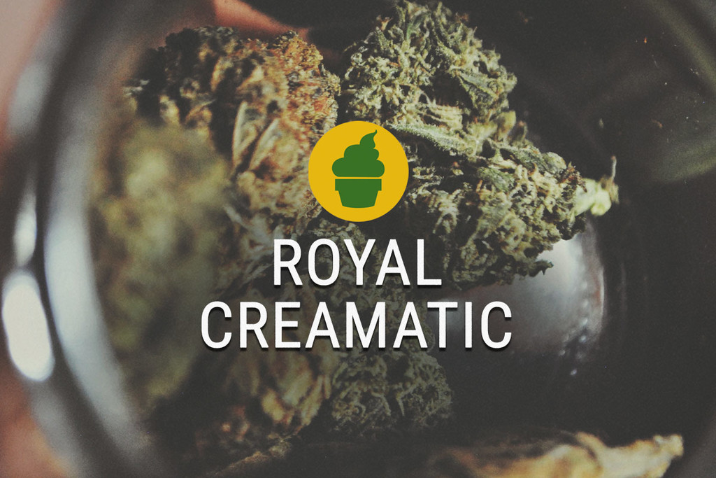 Royal Creamatic Rook Verslag