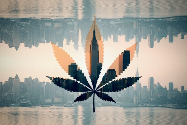New York, 's Werelds Grootste Cannabisconsument
